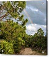Rainbow Path Acrylic Print
