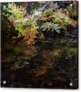 Rainbow Pickle Creek Reflections 6272 H_3 Acrylic Print