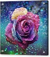Rainbow Rose In The Rain Acrylic Print