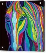 Rainbow Stallion Acrylic Print