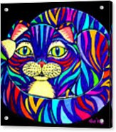 Rainbow Striped Cat 2 Acrylic Print