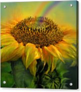 Rainbow Sunflower Acrylic Print