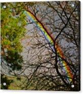 Rainbow Tree Acrylic Print