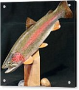 Rainbow Trout On Maple 15 Acrylic Print by Eric Knowlton