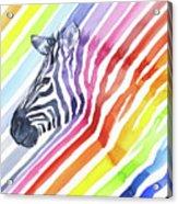 Rainbow Zebra Pattern Acrylic Print