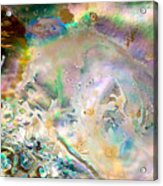 Rainbows And Seaweed Acrylic Print