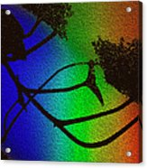 Rainbows And Stary Clouds Acrylic Print