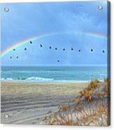 Rainbows And Wings I Acrylic Print by Dan Carmichael
