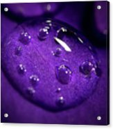 Raindrop, Prn Acrylic Print