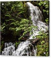 Rainforest Falls Acrylic Print