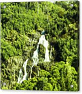 Rainforest Rapids Acrylic Print