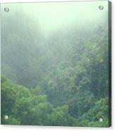 Rainforest Valley Near Hana Acrylic Print