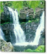 Rainforest Waterfalls Acrylic Print