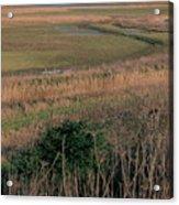 Rainham Marshes Acrylic Print