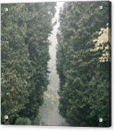 Rainy Gloomy Alley In Park Acrylic Print