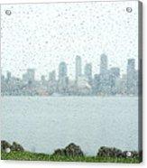 Rainy Skyline D040 Acrylic Print