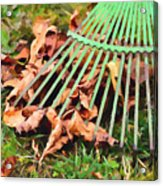 Raking The Fallen Autumn Leaves Acrylic Print