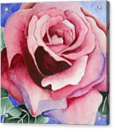 Ramblin' Rose Acrylic Print