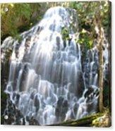 Ramona Falls-ii Softer Acrylic Print