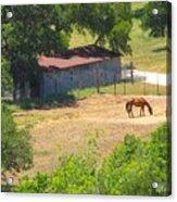 Ranch Life Acrylic Print