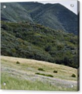 Rancho Sierra Vista Satwiwa Mountains Portrait Acrylic Print