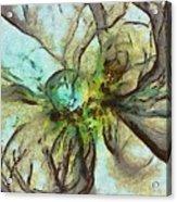 Raniform Daydream  Id 16098-004020-83150 Acrylic Print