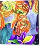 Ranunculus And Iris Acrylic Print