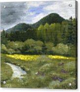 Rapid Creek Acrylic Print