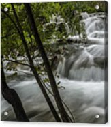 Rapids In Forest  Acrylic Print