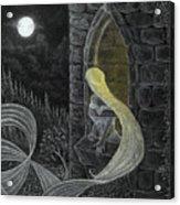 Rapunzel By Night Acrylic Print