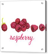 Raspberry Acrylic Print by Cindy Garber Iverson