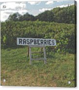 Raspberry Fields Three Acrylic Print