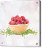 Raspberry Holidays Acrylic Print