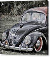 Rat Rod Beetle Acrylic Print