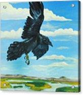 Raven Landing Acrylic Print by Amy Reisland-Speer