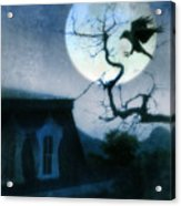 Raven Landing On Branch In Moonlight Acrylic Print