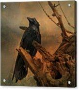 Raven Lover Acrylic Print