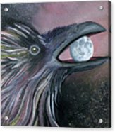 Raven Moon Acrylic Print by Amy Reisland-Speer