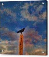 Raven Pole Acrylic Print