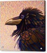 Raven Shaman Acrylic Print
