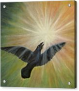 Raven Steals The Light Acrylic Print by Bernadette Wulf