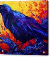 Raven's Echo Acrylic Print