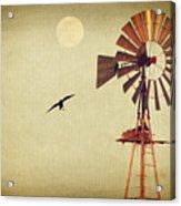 Ravens Under The Moon Acrylic Print