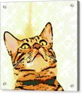 Ravi Series #1 Acrylic Print