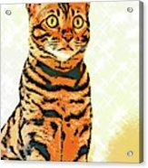 Ravi Series #8 Acrylic Print