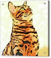 Ravi Series #9 Acrylic Print