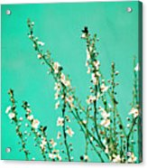 Reach - Botanical Wall Art Acrylic Print