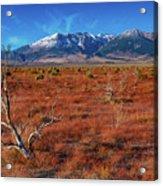 Read Fields Eastern Sierra Acrylic Print