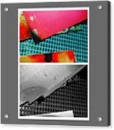 Ready Red  Acrylic Print