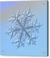 Real Snowflake - Hyperion Acrylic Print